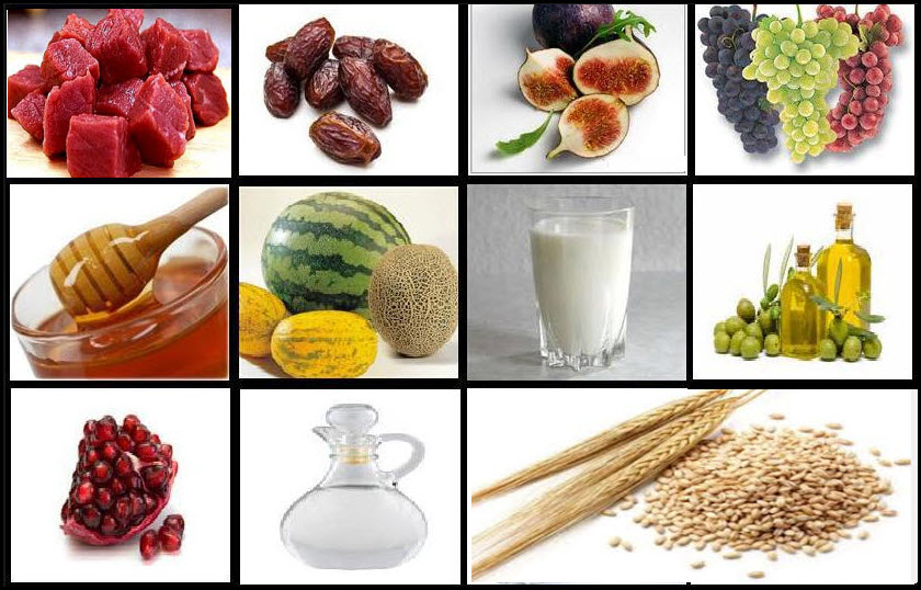 Science and Sunnah: The food of the Prophet (peace be upon him)